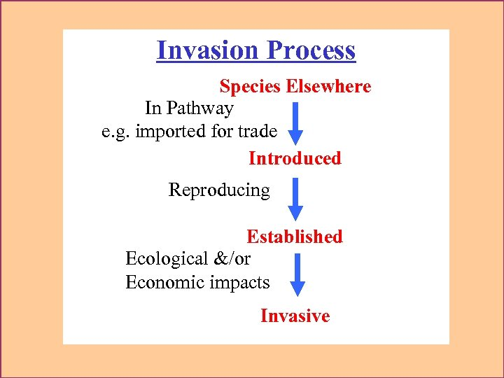 Invasion Process Species Elsewhere In Pathway e. g. imported for trade Introduced Reproducing Established