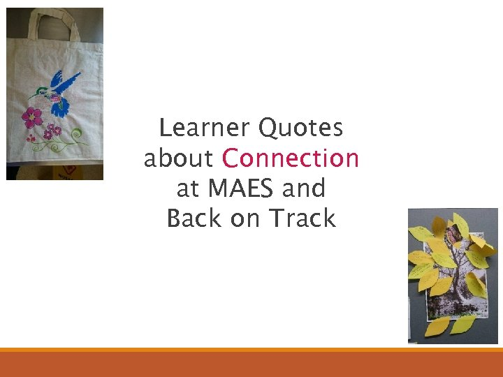 Learner Quotes about Connection at MAES and Back on Track