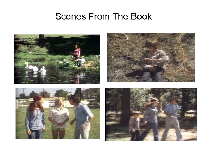 Scenes From The Book