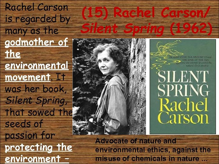 • Rachel Carson is regarded by many as the godmother of the environmental