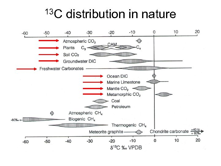 13 C distribution in nature