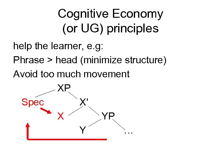 Cognitive Economy (or UG) principles help the learner, e. g: Phrase > head (minimize