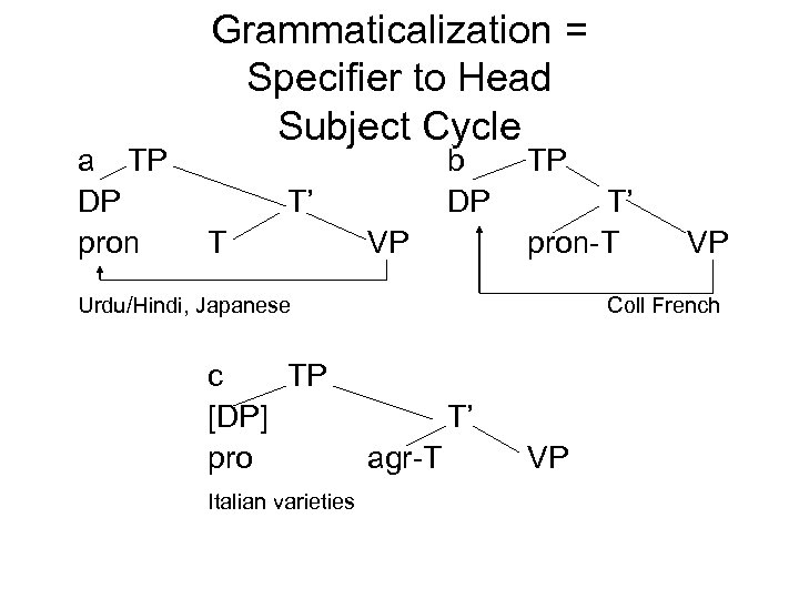 a TP DP pron Grammaticalization = Specifier to Head Subject Cycle b DP T'