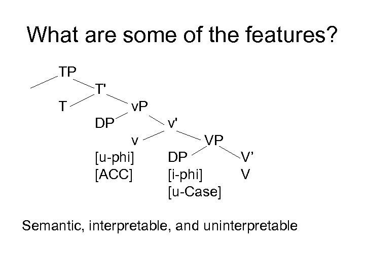 What are some of the features? TP T' T v. P DP v [u-phi]