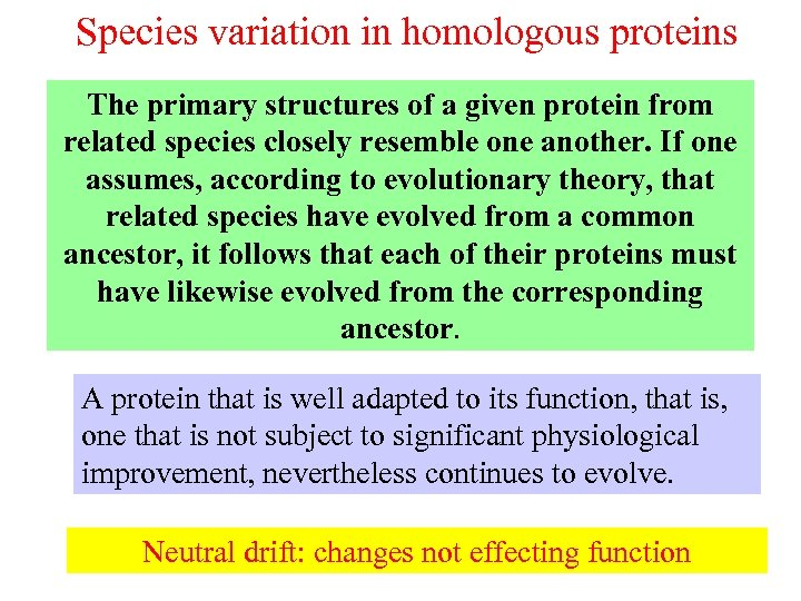 Species variation in homologous proteins The primary structures of a given protein from related