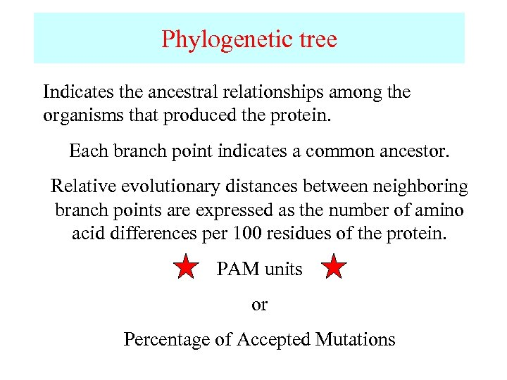 Phylogenetic tree Indicates the ancestral relationships among the organisms that produced the protein. Each