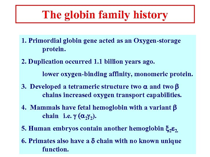 The globin family history 1. Primordial globin gene acted as an Oxygen-storage protein. 2.