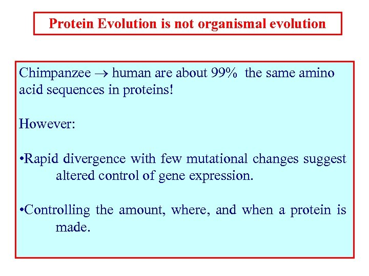 Protein Evolution is not organismal evolution Chimpanzee human are about 99% the same amino
