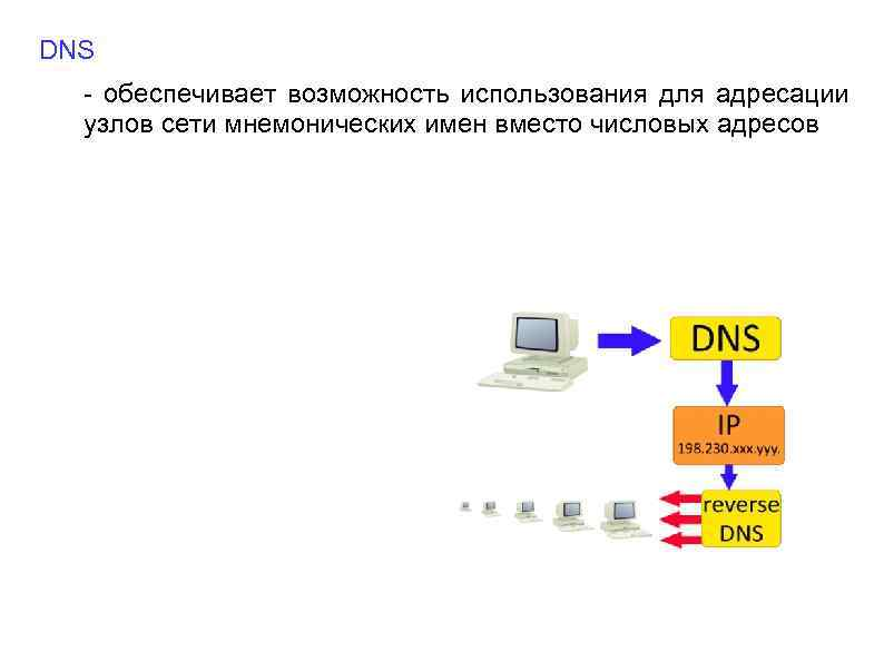 DNS - обеспечивает возможность использования для адресации узлов сети мнемонических имен вместо числовых адресов