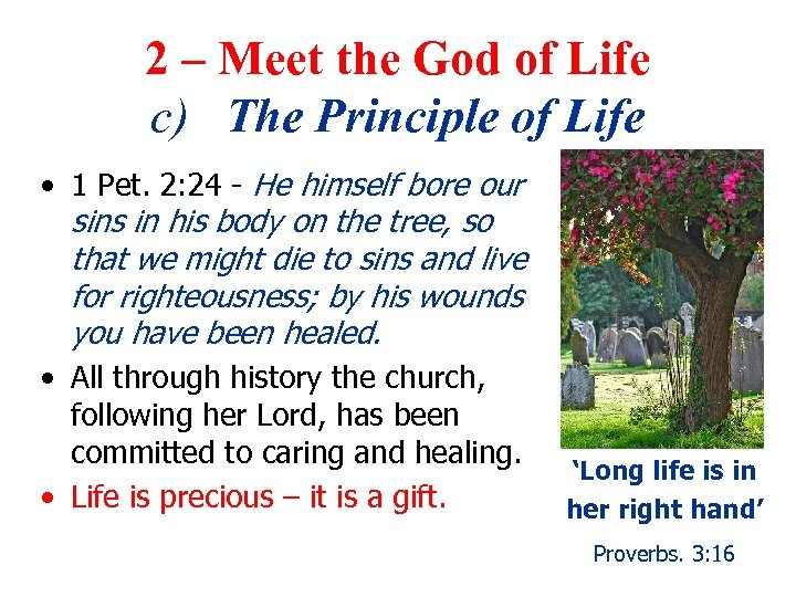 2 – Meet the God of Life c) The Principle of Life • 1