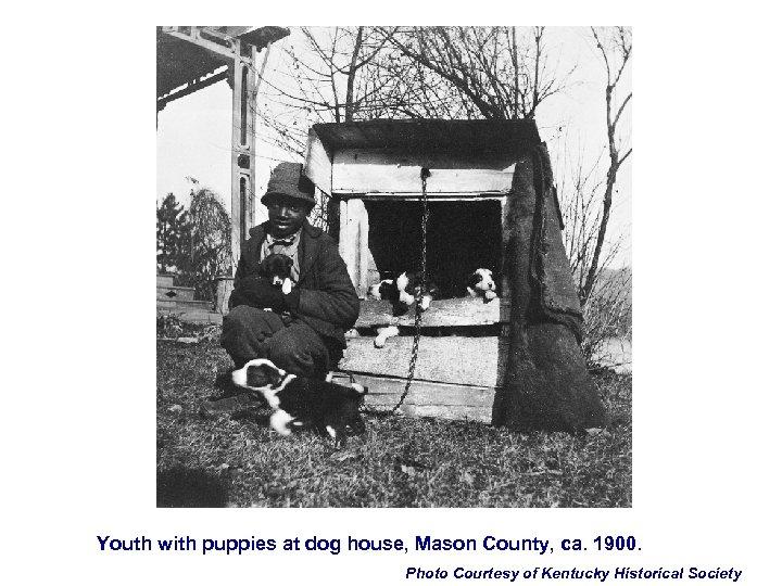 Youth with puppies at dog house, Mason County, ca. 1900. Photo Courtesy of Kentucky