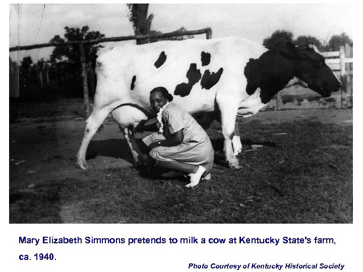 Mary Elizabeth Simmons pretends to milk a cow at Kentucky State's farm, ca. 1940.