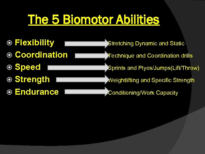 The 5 Biomotor Abilities Flexibility Coordination Speed Strength Endurance Stretching Dynamic and Static Technique