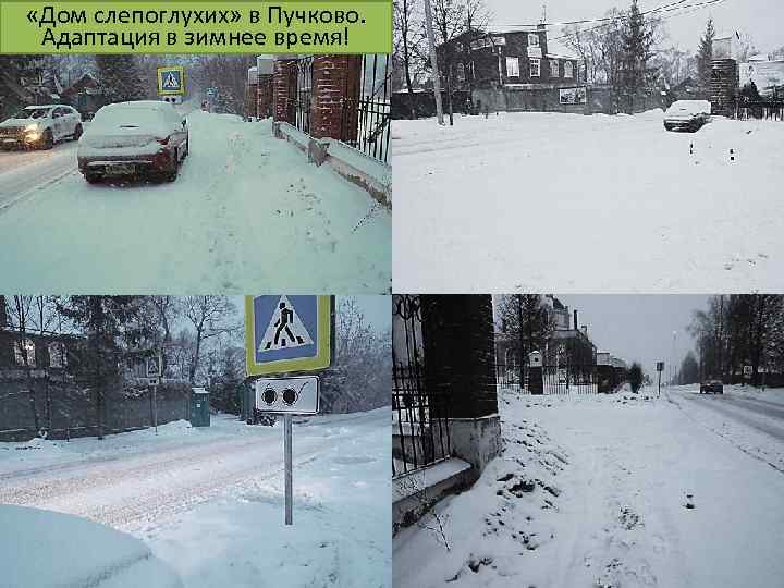 «Дом слепоглухих» в Пучково. Адаптация в зимнее время!