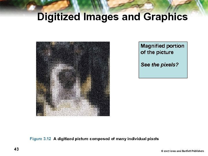 Digitized Images and Graphics Magnified portion of the picture See the pixels? Figure 3.