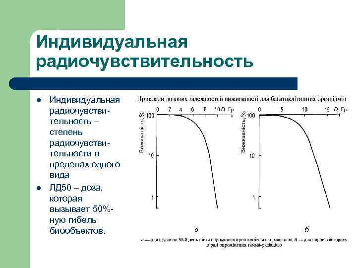Индивидуальная радиочувствительность l l Индивидуальная радиочувствительность – степень радиочувствительности в пределах одного вида ЛД