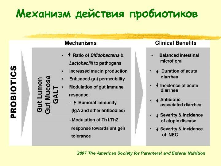 Механизм действия пробиотиков 2007 The American Society for Parenteral and Enteral Nutrition.