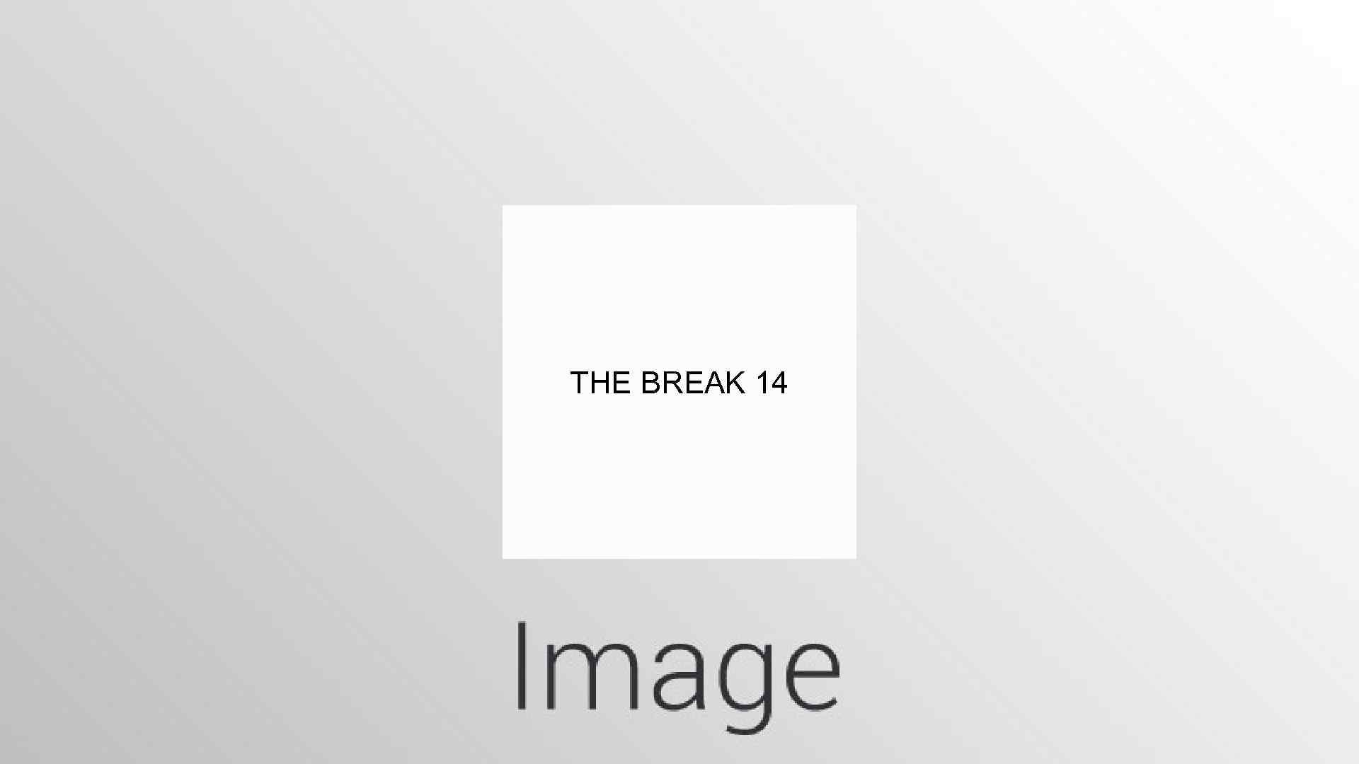 THE BREAK 14