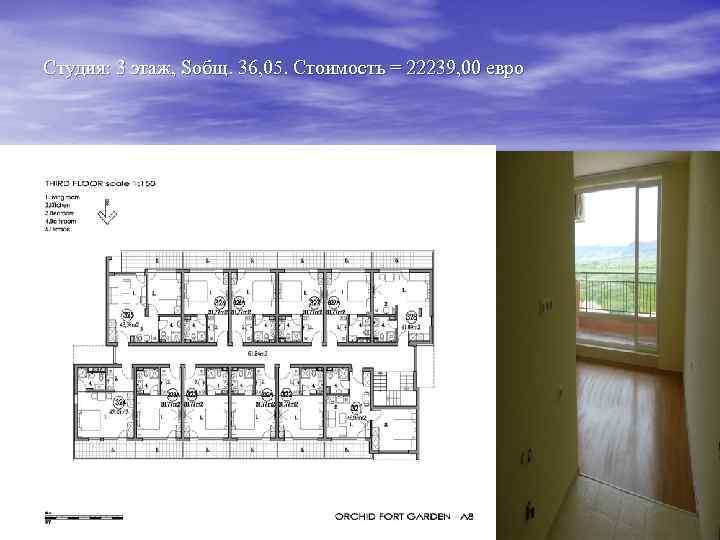 Студия: 3 этаж, Sобщ. 36, 05. Стоимость = 22239, 00 евро
