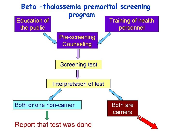 Beta -thalassemia premarital screening program Training of health personnel Education of the public Pre-screening