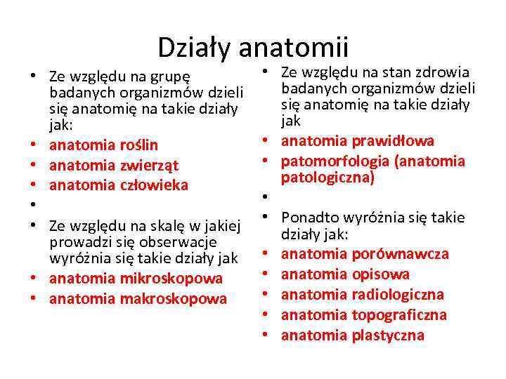 Działy anatomii • Ze względu na grupę badanych organizmów dzieli się anatomię na takie