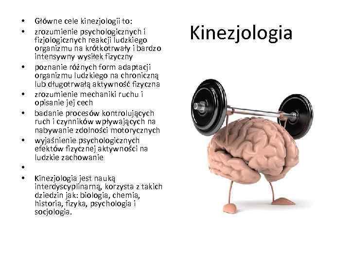 • • Główne cele kinezjologii to: zrozumienie psychologicznych i fizjologicznych reakcji ludzkiego organizmu