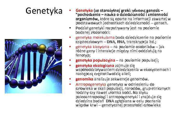 Genetyka • • Genetyka (ze starożytnej greki: γένεσις genesis –