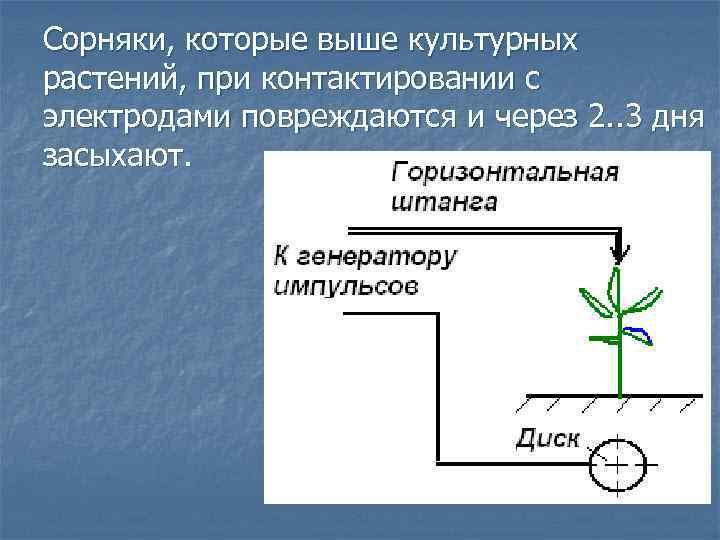 Сорняки, которые выше культурных растений, при контактировании с электродами повреждаются и через 2. .