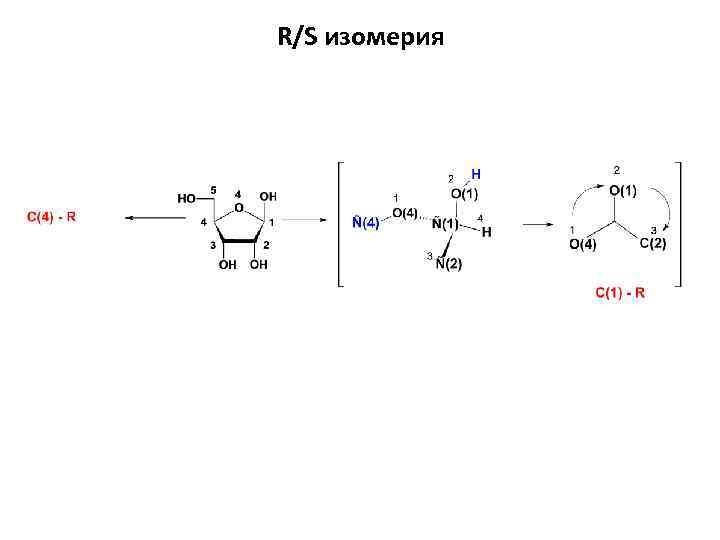 R/S изомерия