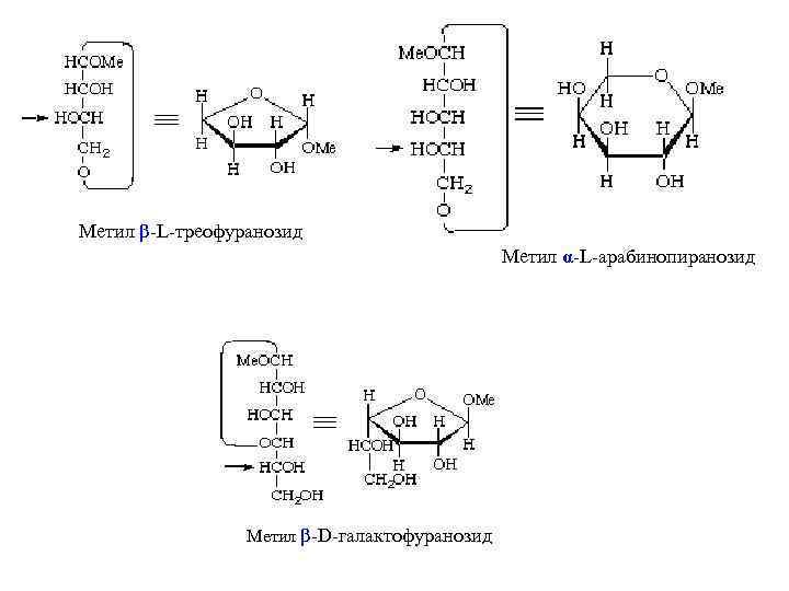 Метил β-L-треофуранозид Метил α-L-арабинопиранозид Метил β-D-галактофуранозид