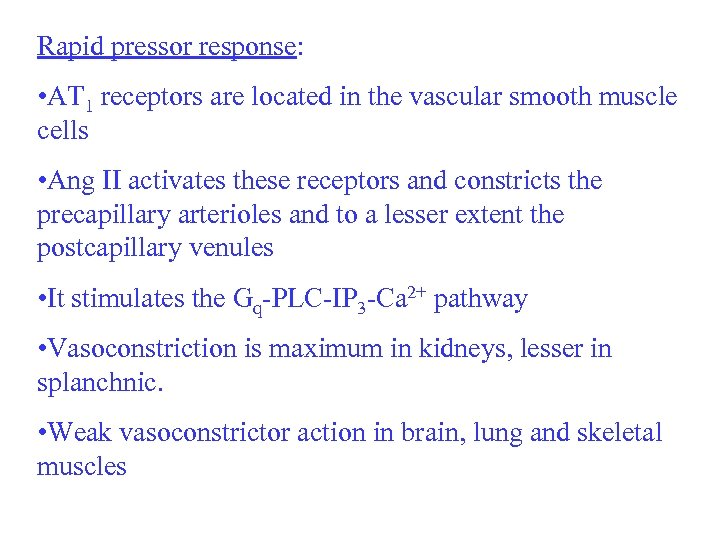 Rapid pressor response: • AT 1 receptors are located in the vascular smooth muscle