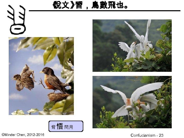 《 說文 》 習,鳥數飛也。 背 悟 問用 ©Minder Chen, 2012 -2016 Confucianism - 23