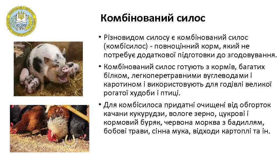 Комбінований силос • Різновидом силосу є комбінований силос (комбісилос) - повноцінний корм, який не