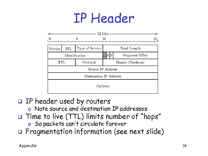 IP Header q IP header used by routers q Time to live (TTL) limits