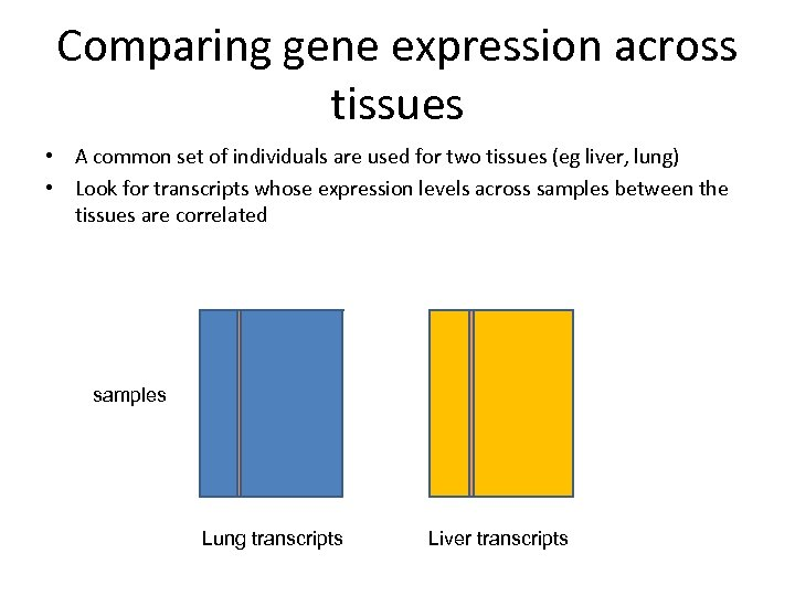 Comparing gene expression across tissues • A common set of individuals are used for
