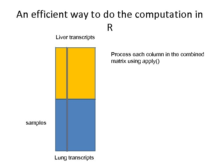 An efficient way to do the computation in R Liver transcripts Process each column