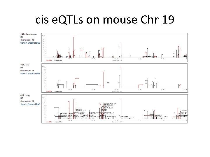 cis e. QTLs on mouse Chr 19