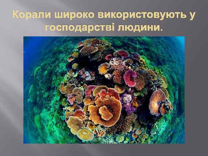 Корали широко використовують у господарстві людини.