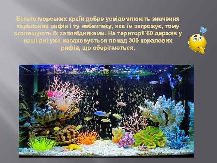 Багато морських країн добре усвідомлюють значення коралових рифів і ту небезпеку, яка їм загрожує,