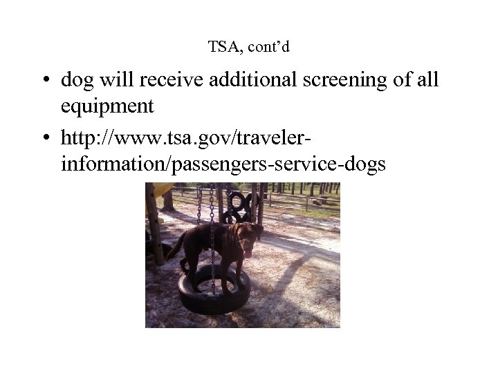 TSA, cont'd • dog will receive additional screening of all equipment • http: //www.