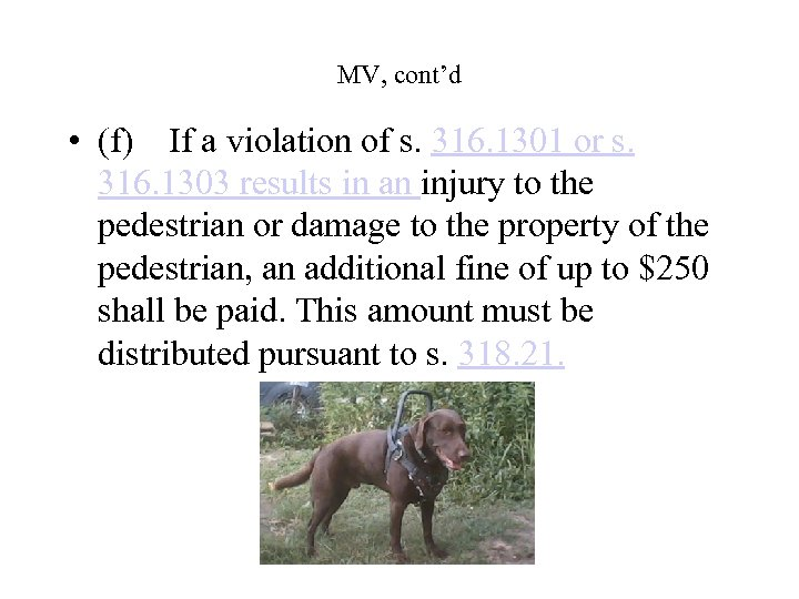 MV, cont'd • (f)If a violation of s. 316. 1301 or s. 316. 1303