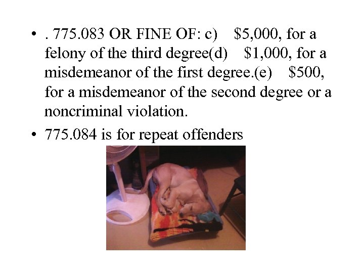 • . 775. 083 OR FINE OF: c)$5, 000, for a felony of