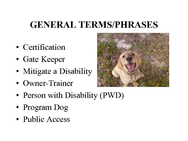 GENERAL TERMS/PHRASES • • Certification Gate Keeper Mitigate a Disability Owner-Trainer Person with Disability