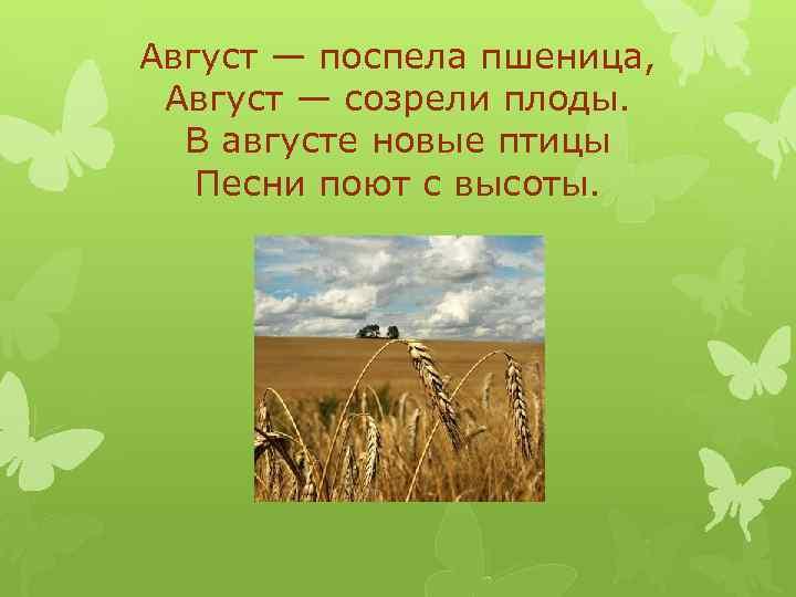 Август — поспела пшеница, Август — созрели плоды. В августе новые птицы Песни поют