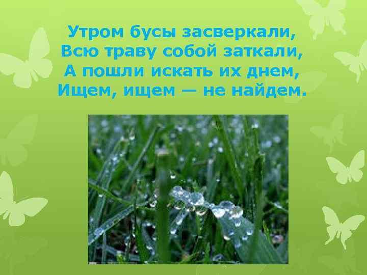 Утром бусы засверкали, Всю траву собой заткали, А пошли искать их днем, Ищем, ищем