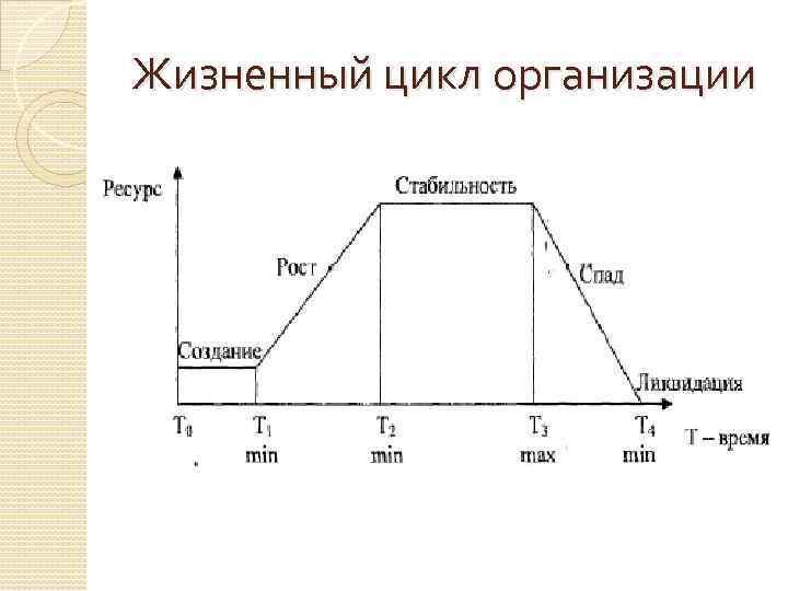 Жизненный цикл организации