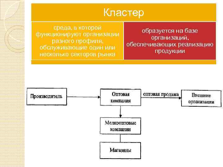 Кластер среда, в которой функционируют организации разного профиля, обслуживающие один или несколько секторов рынка