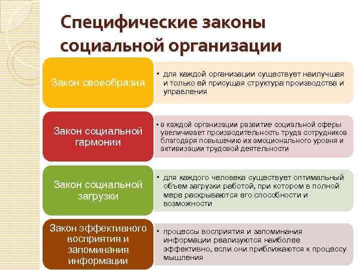 Специфические законы социальной организации Закон своеобразия • для каждой организации существует наилучшая и только