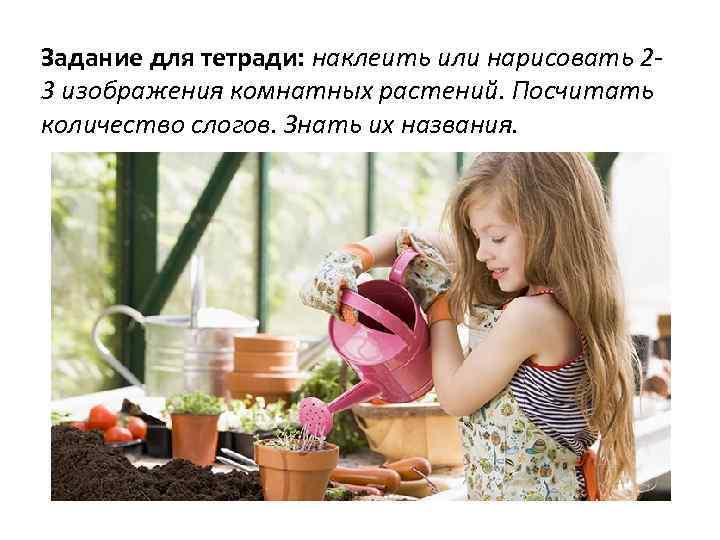 Задание для тетради: наклеить или нарисовать 23 изображения комнатных растений. Посчитать количество слогов. Знать