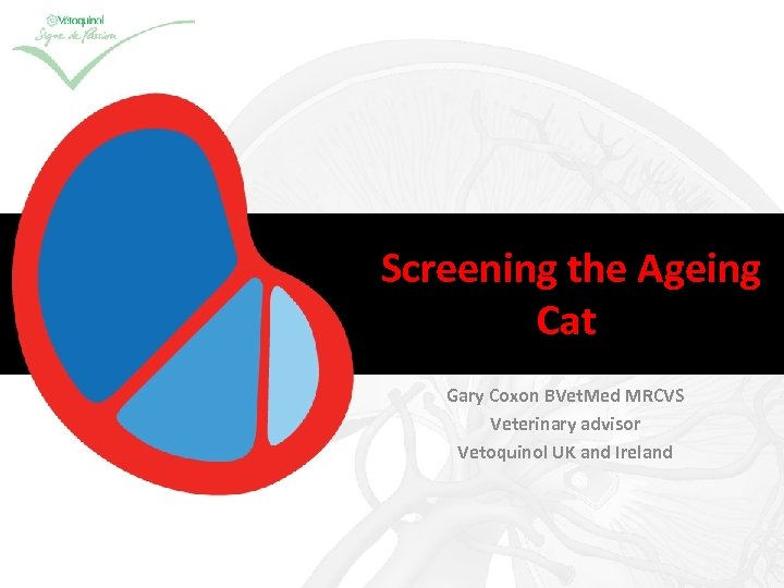 Screening the Ageing Cat Gary Coxon BVet. Med MRCVS Veterinary advisor Vetoquinol UK and